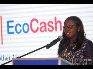 Natalie Jabangwe, EcoCash General Manager