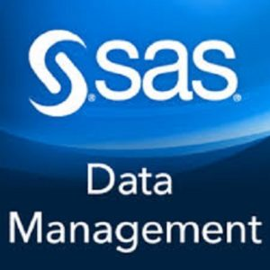 SAS, the software firm