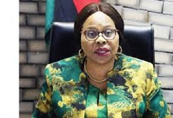 Minister of Information, Publicity and Broadcasting Services, Monica Mutsvangwa